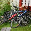 Bikes near wooden porch in green yard. - Stock Photo