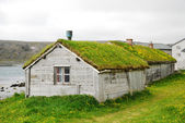 Wooden houses with green roofs in Hamningberg. — Stock Photo