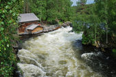 Rapids in taiga forest, Juuma, Finland. — Stock Photo