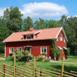 Red Swedish house in the middle of nature — Stock Photo