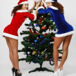 Happy Santas decorating the Christmas tree. — Stock Photo #11250459