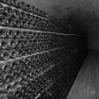 Cellar of Crimewinery on inside. — Stockfoto #11359790