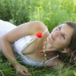 Peaceful meadow — Stock Photo