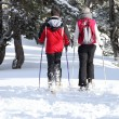 Cross country skiers - Stock Photo