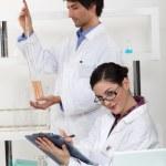 Male and female laboratory technicians — Stock Photo #10845893