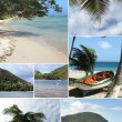 Montage of a tropical beach - Stock Photo