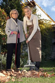 Young woman helping a senior with her garden — Stock Photo