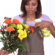 Young woman florist on white background - Stock Photo