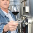 Stock Photo: Winemaker with glass of wine
