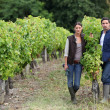 Stock Photo: Couple posing in a vineyard