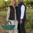 Couple on farm — Stock Photo #10851963
