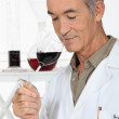 Stock Photo: Expert tasting wine