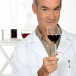 Portrait of oenologist — Stock Photo #10852121
