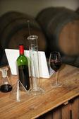 Analysing wine — Stock Photo