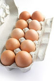 Dozen eggs — Stock Photo