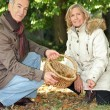 Couple foraging in the woods — Stock Photo #10860212