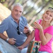 Senior couple enjoying romantic picnic — Stock Photo #10889392