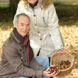 Middle-aged couple gathering chestnuts — Stockfoto