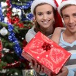 Couple with Christmas presents — Stock Photo #10896339