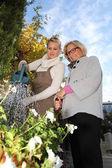 Help in the garden — Stock Photo