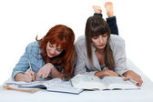 Female students working together — Stock Photo