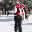 Stock Photo: Womretuning to chalet after cross country ski