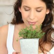 Stock Photo: Womsmelling herb pot