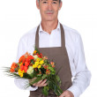 Stock Photo: Experienced Florist
