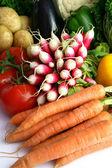 Rzodkiewki i inne warzywa — Zdjęcie stockowe
