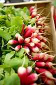 Box of radishes — Stock Photo