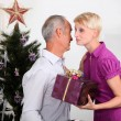 christmas gift — Stock Photo #11033440