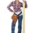 Cute carpenter posing. — Stock Photo #11033784