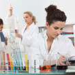 Stock Photo: Experiment in Laboratory