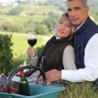 Farmer and wife drinking wine in a vineyard - Stock Photo