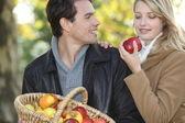 Couple gathering apples — Stock Photo