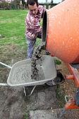 Man pouring cement into wheelbarrow — Stock Photo