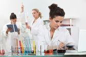 Experimentera i laboratoriet — Stockfoto