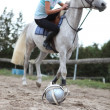 Stock Photo: Polo Player
