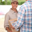 Package Delivery — Stock Photo #11053279