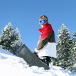 Stock Photo: Snowboarder posing