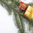 Christmas tree decorations — Stock fotografie #11062470