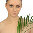 Woman holding a fern - Stock Photo