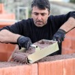 Stock Photo: Bricklayer building house