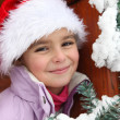 Stock Photo: Girl with Santa hat