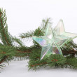 Christmas decoration — Stock fotografie #11067637