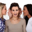 Women gossiping — Stock Photo #11070583