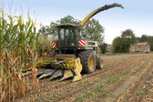 Combine harvester in a corn field — Stock Photo