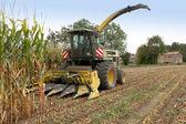 Combine harvester in a corn field — Stock Photo