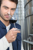 Oenologist — Stock Photo