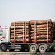 Truck transporting logs — Stock Photo #11467189